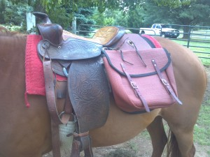My extra large Smith and Edwards saddle bags