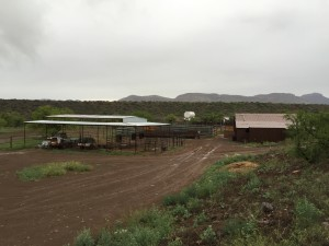 Bar-M Ranch, northeast of Douglas, AZ