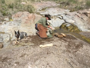 Filling canteens in the creek at High Lonesome Canyon